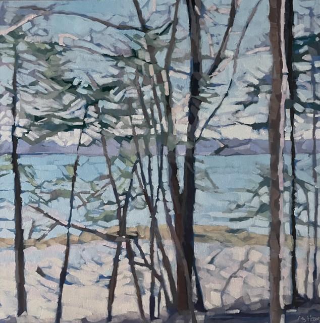 Seaside Woods