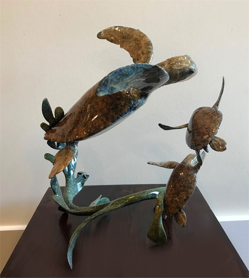 Hawksbill Turtle Family (6/75)