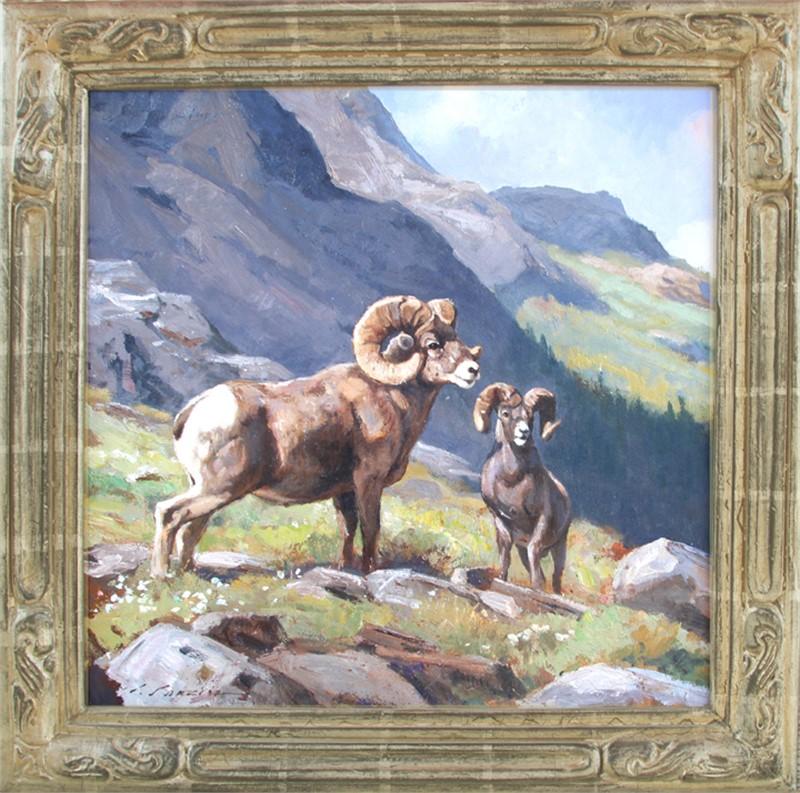 Sheep on Hidden Lake Pass, 2015