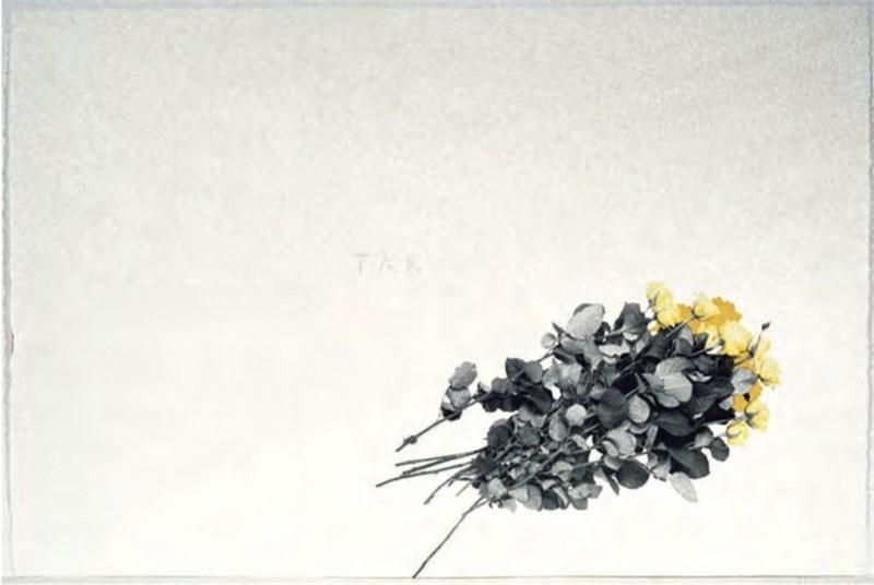TAK (1/33), 2004