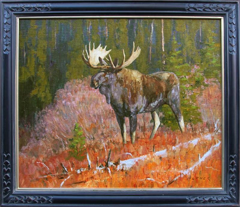 Blue River Moose, 2018