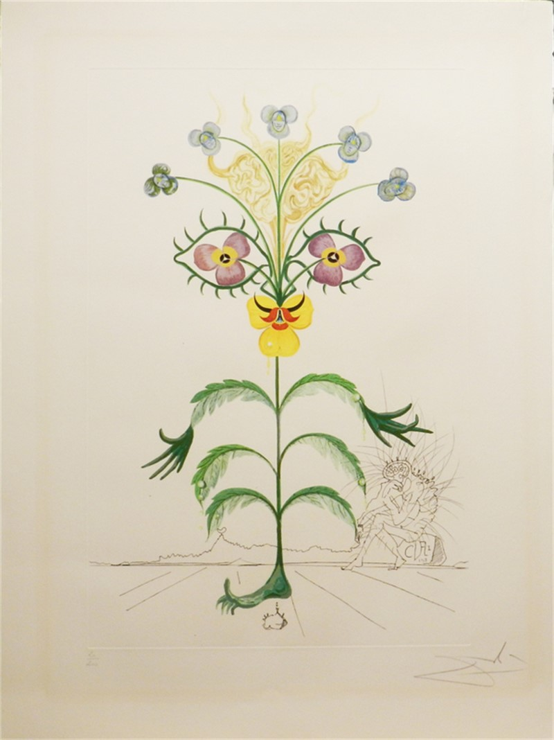 Flora Dalinae Viola Cogitans (XII/XXV), 1968