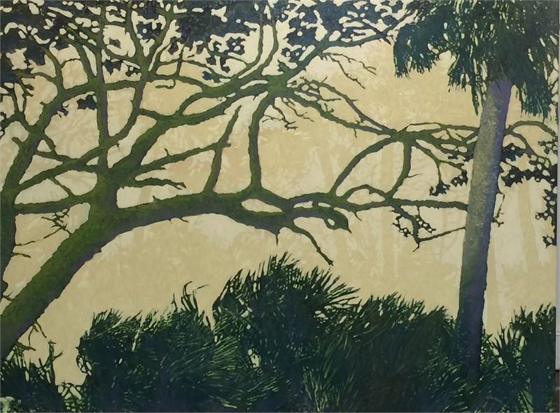 Botany Bay Twisted Live Oak