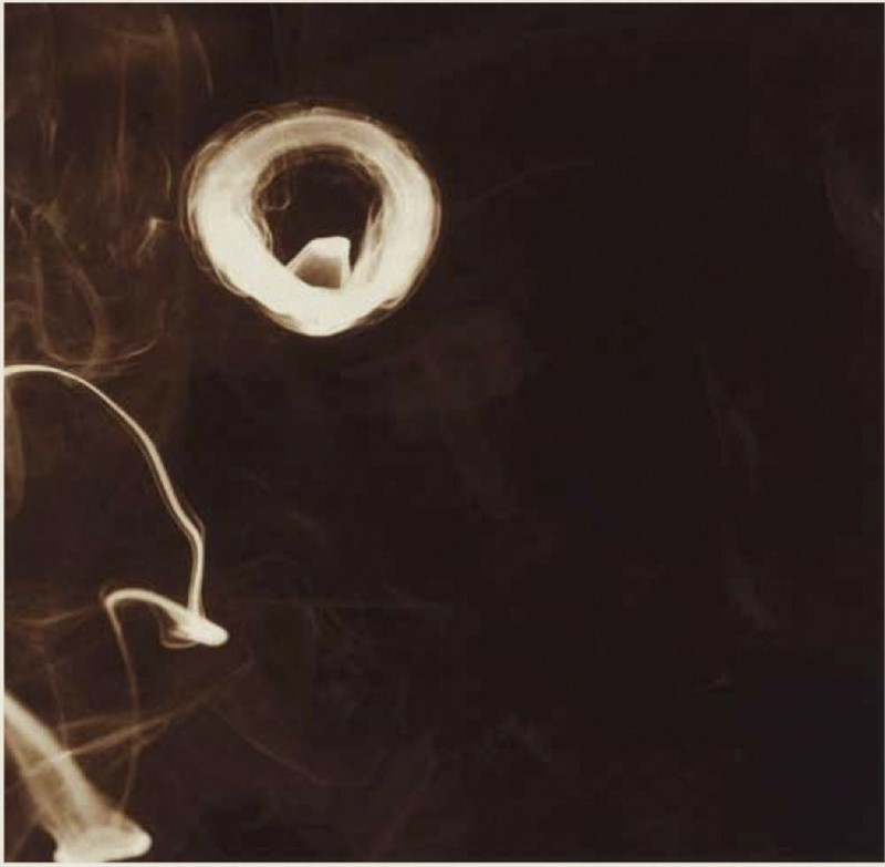 Smoke Rings, June 6, 2001 (1/75), 2001
