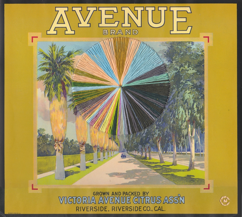 Avenue, 2019