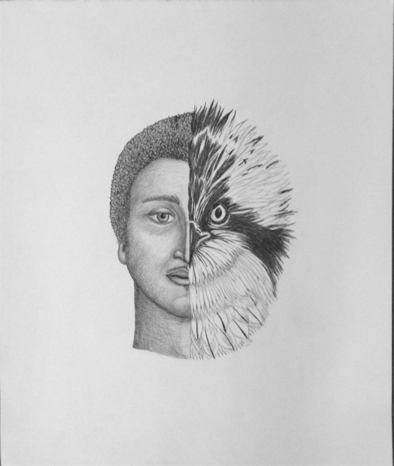 Osprey/Man, 2016