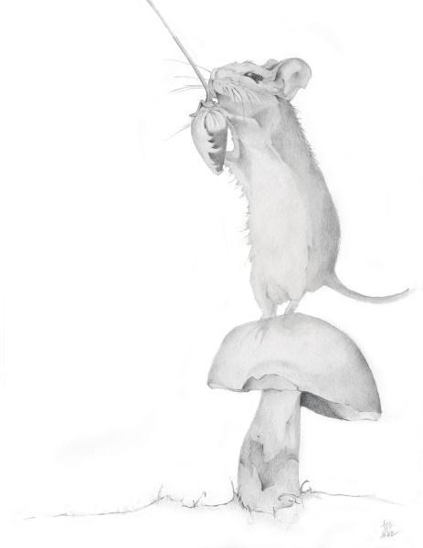 Mouse on Mushroom