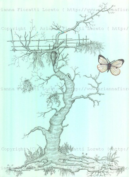 Gnarled Tree with Butterfly