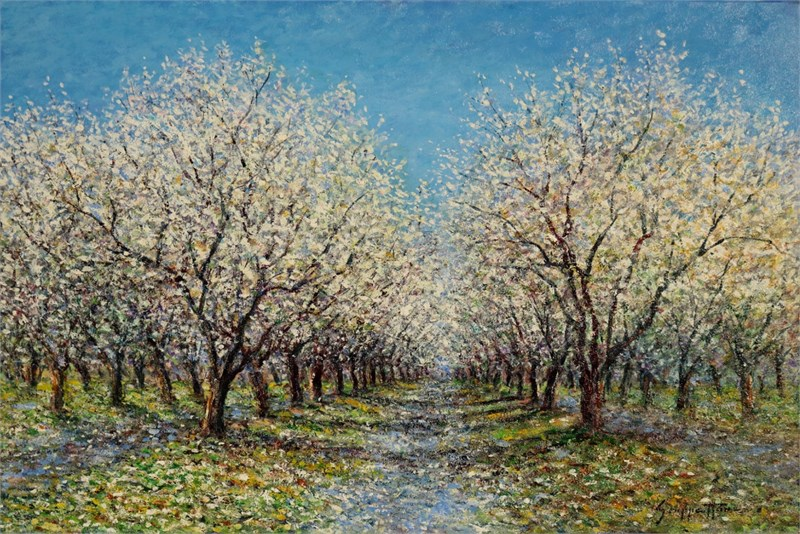 The Almond Grove