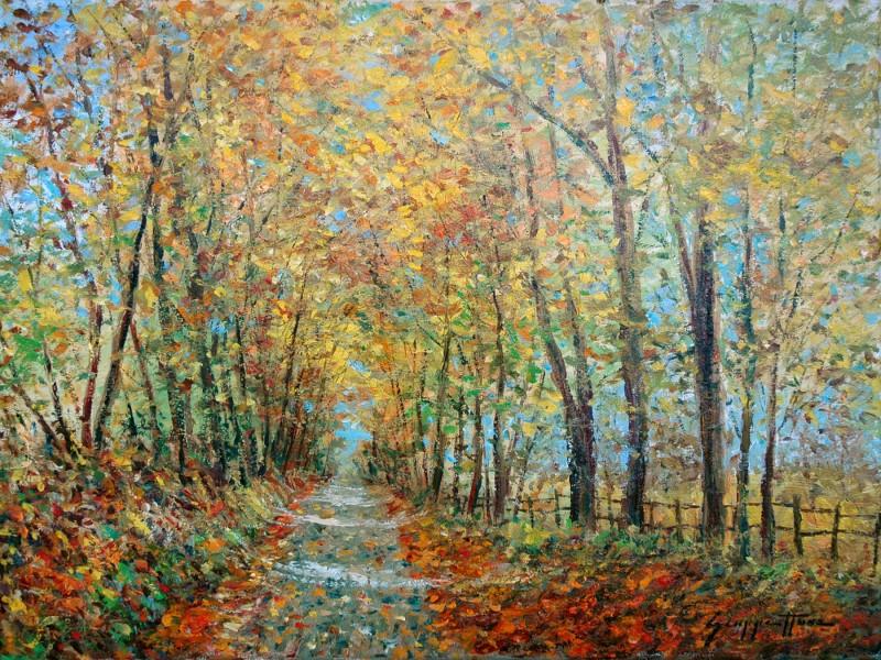 Sunlit Lane