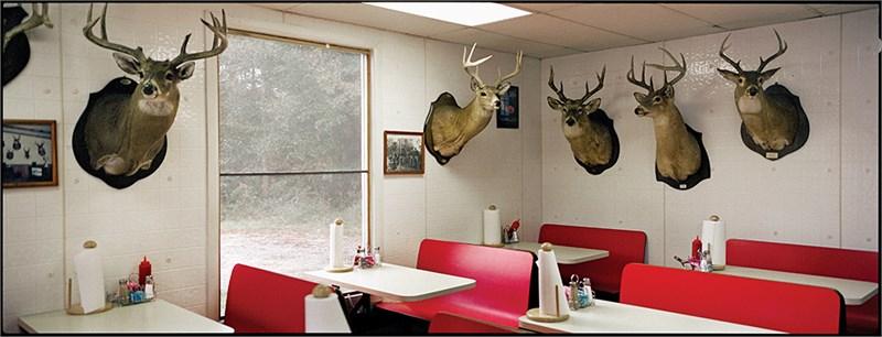 J&R's, Deer Heads, Perry, AL