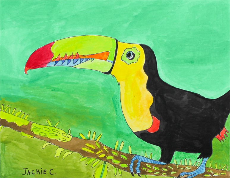 Toucan Tropical Bird (FRAMED)