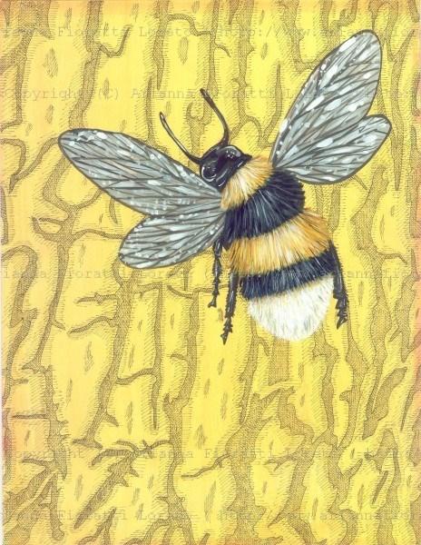 Bumble Bee on Bark