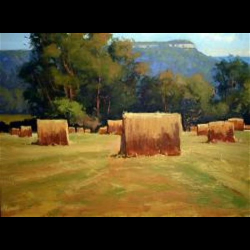 Hill Country Hay Bales