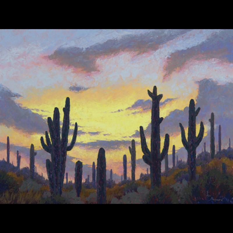 Sonoran Serenity, 2018