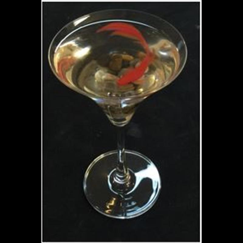 Martini Koi
