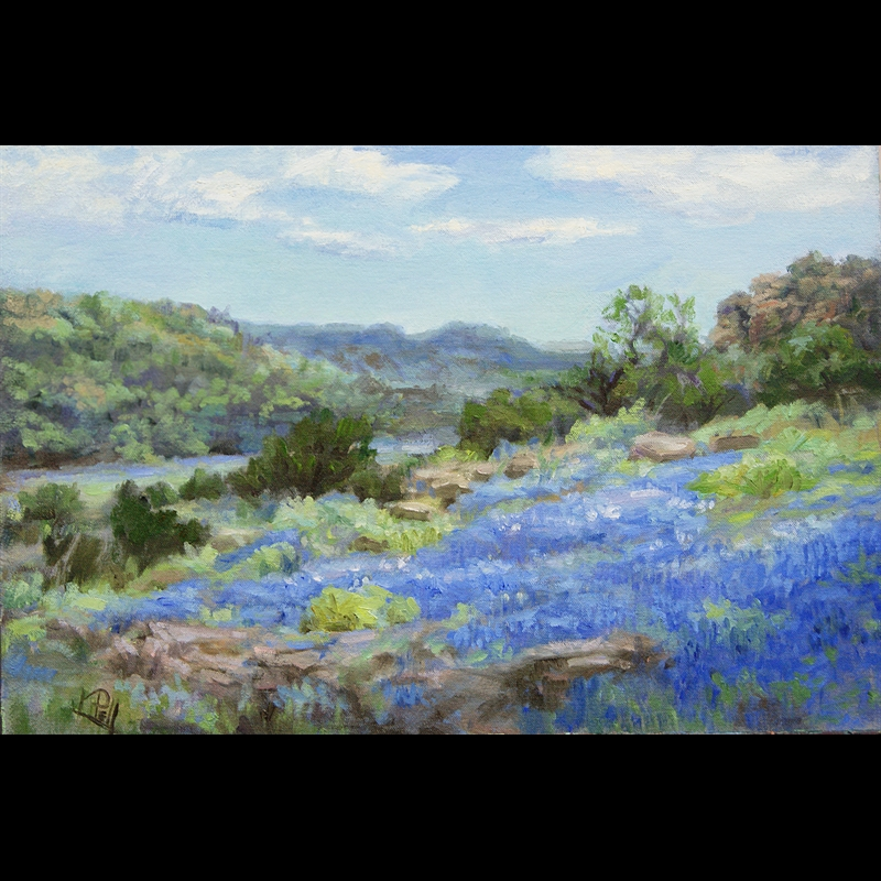 Texas Hill Country Bluebonnets, 2020