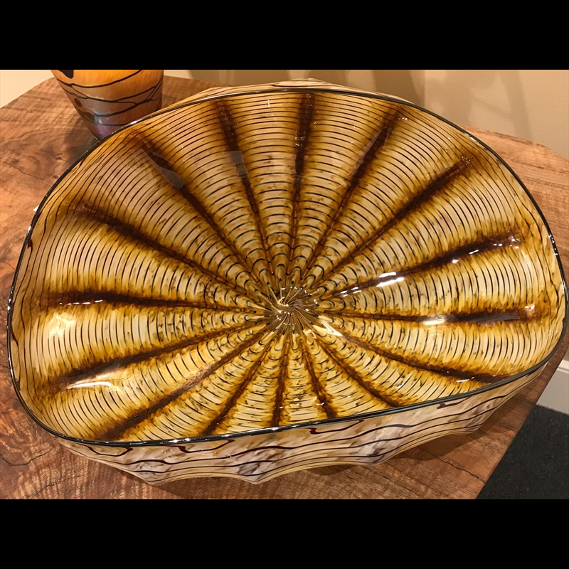 Clam Shell Large