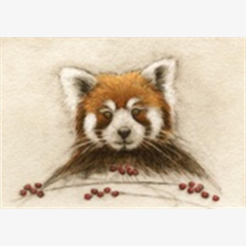 Red Panda_UF (50/100)