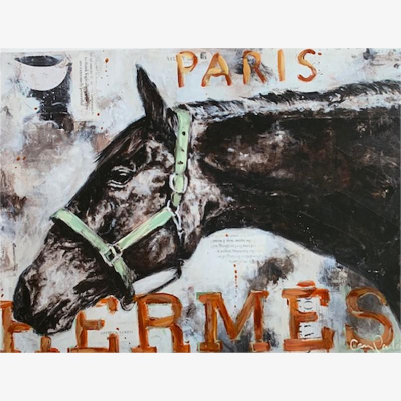 Hermes 2, 2019