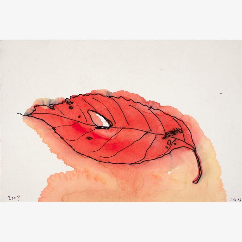 kyoto leaf, 2008