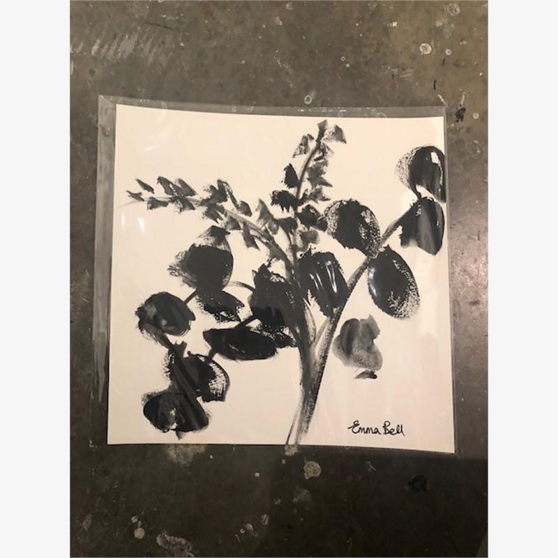 Black & White Eucalyptus 1, 2018