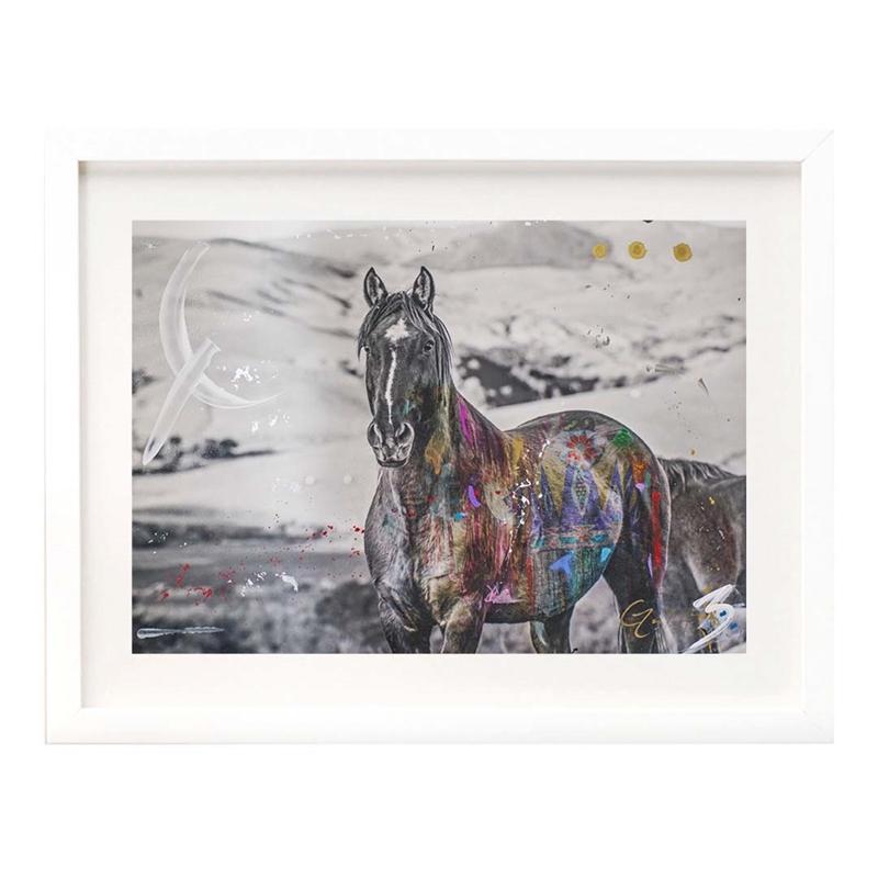 The Stallion by Arno Elias