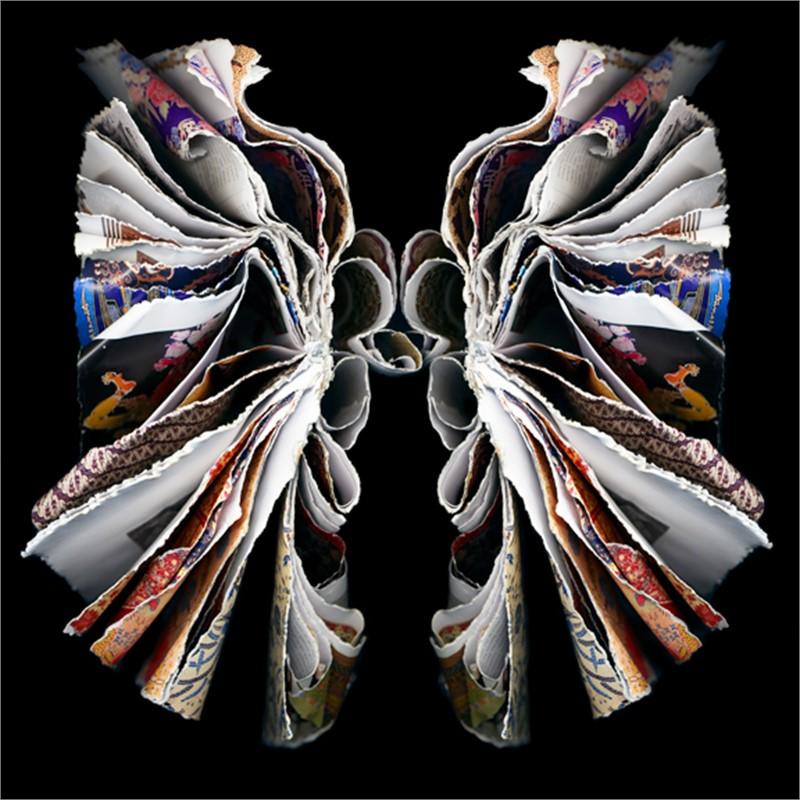 Moth (2/25), 2007