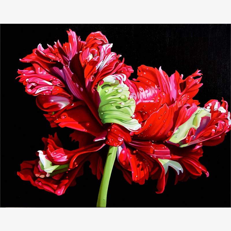 Tulip Fever (TBD/25)