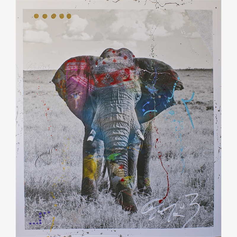 Tembo 5 by Arno Elias