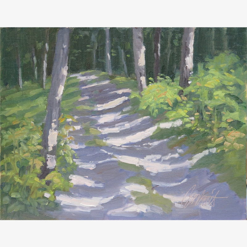 On the White Trail