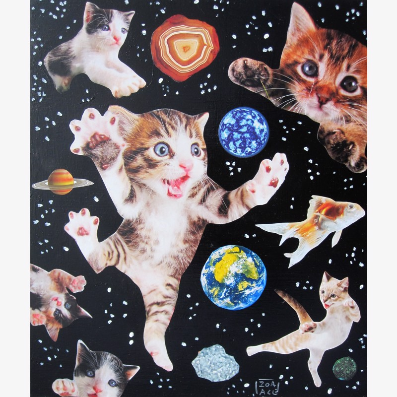 Space Cats #4 by Zoa Ace