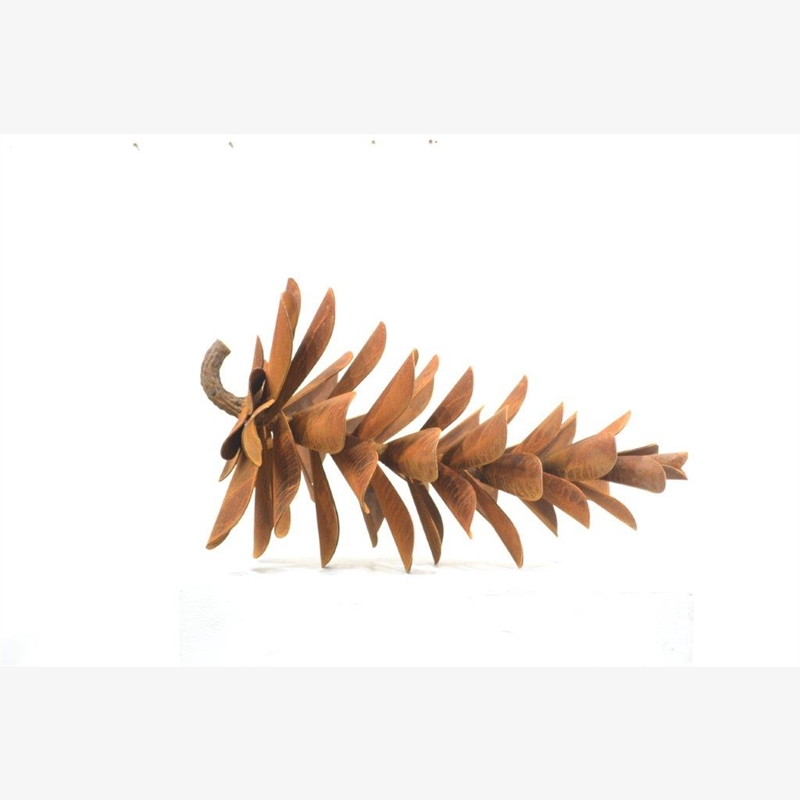 Pine Cone 24 - #20-110