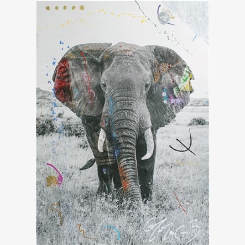 Tembo 9 by Arno Elias