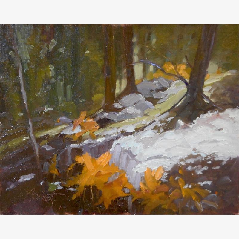 Deep Woods Ferns and Lichen, 2019