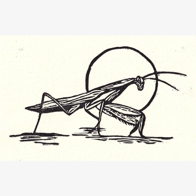 Mantis (2/30), 2020