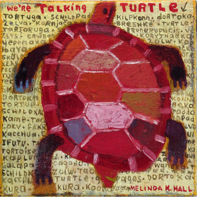We're Talking Turtle