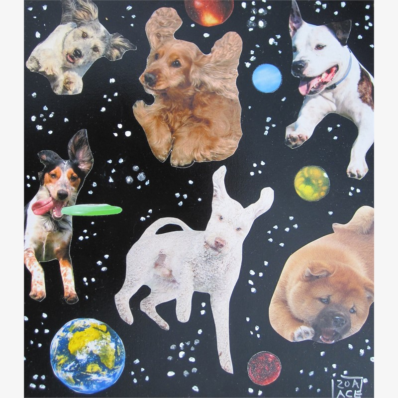 Space Pups by Zoa Ace