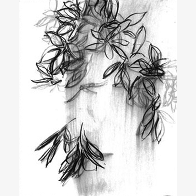 Rhododendron V, 2019