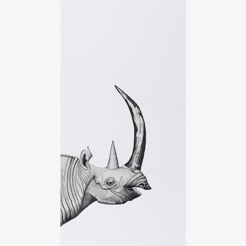 Rhino/Man, 2016