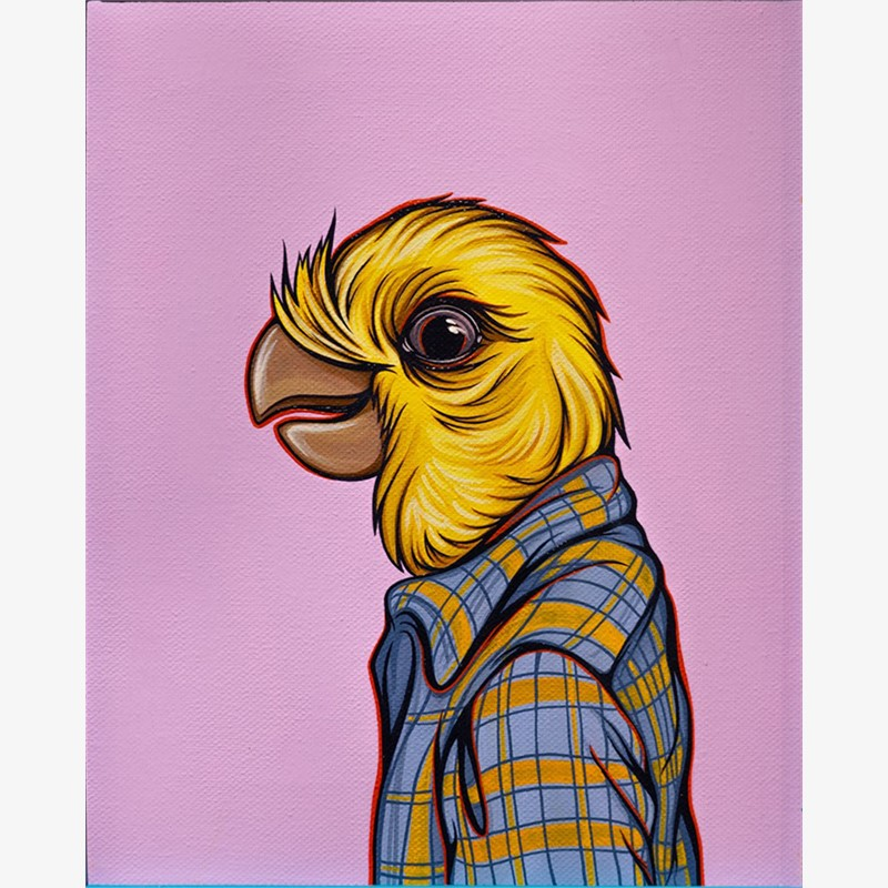 Bird in Your Dad's Shirt Cockatiel by Kaitlin Ziesmer