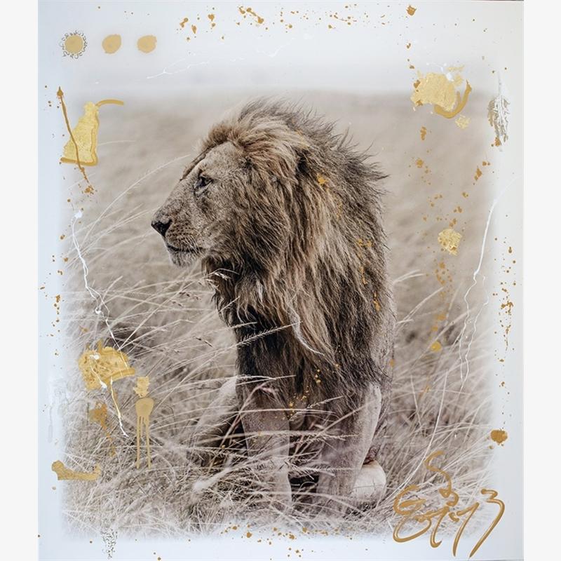 Simba Gold (1/9), 2019