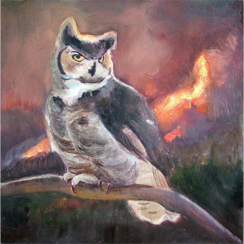 Horned Owl, 2018