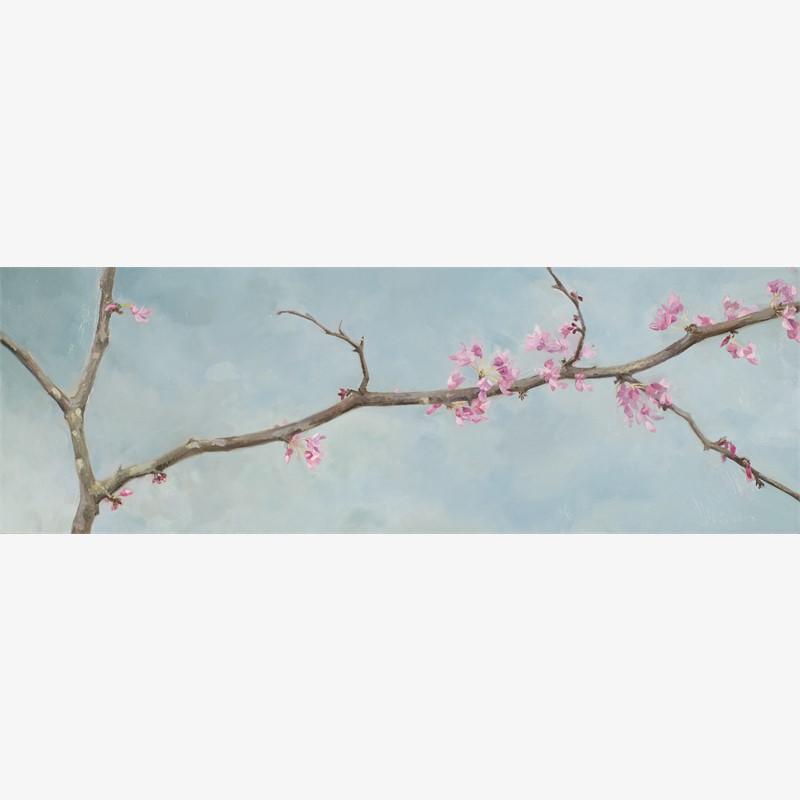 Red bud Branch