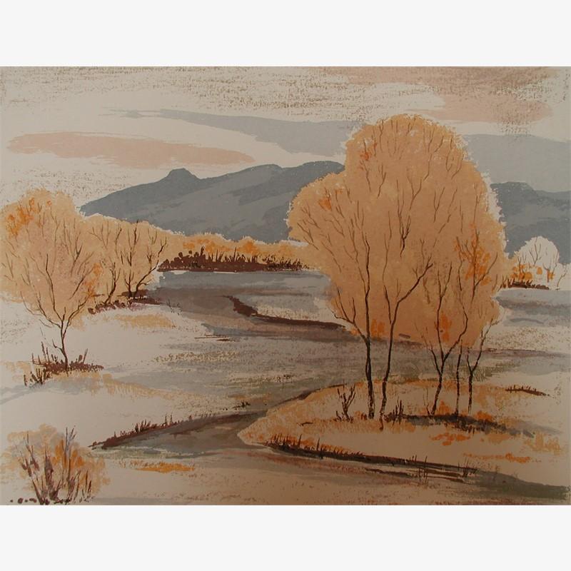 Rio Grande in Winter (98/146)