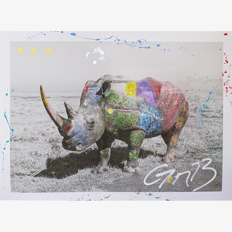Rhinoceros by Arno Elias