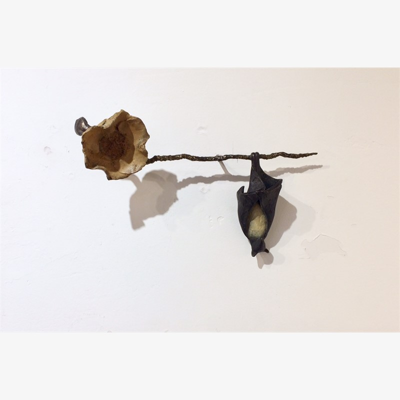 Hanging Bat on a Coconut Branch, yellow flower, 2019