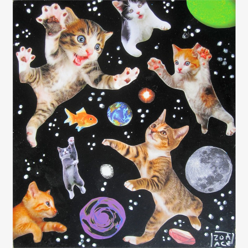 Space Cats, 2018