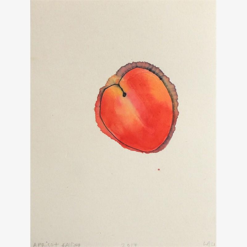 apricot falling, 2014