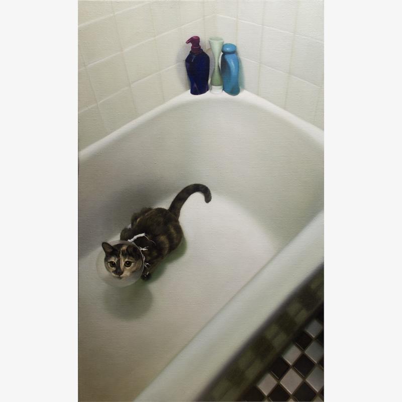 Cat in Bathtub